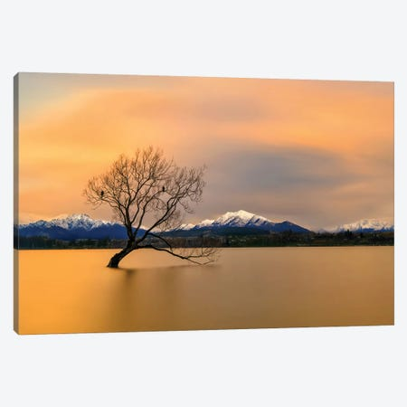 Morning Glow Of The Lake Wanaka Canvas Print #HZH7} by Hua Zhu Canvas Art Print