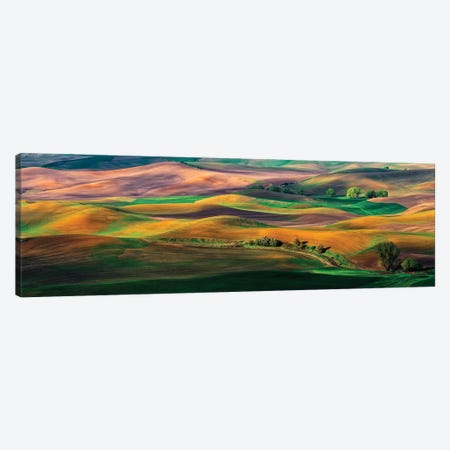 The Palouse Canvas Print #HZH8} by Hua Zhu Canvas Wall Art