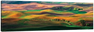 The Palouse Canvas Art Print