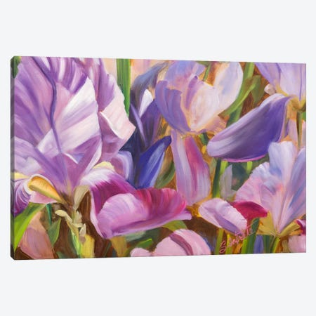 Iris Details II Canvas Print #IAF13} by Sandra Iafrate Canvas Art