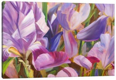 Iris Details II Canvas Art Print