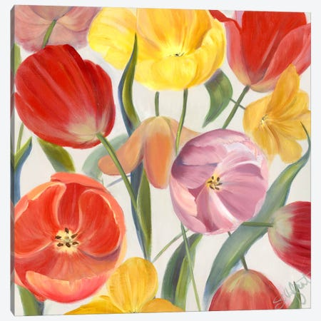 Sandy's Spring Mix I Canvas Print #IAF14} by Sandra Iafrate Canvas Art Print
