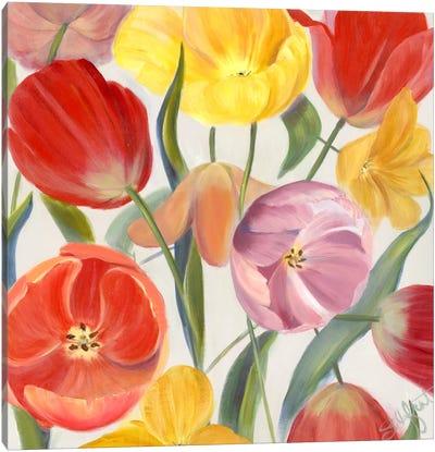 Sandy's Spring Mix I Canvas Art Print