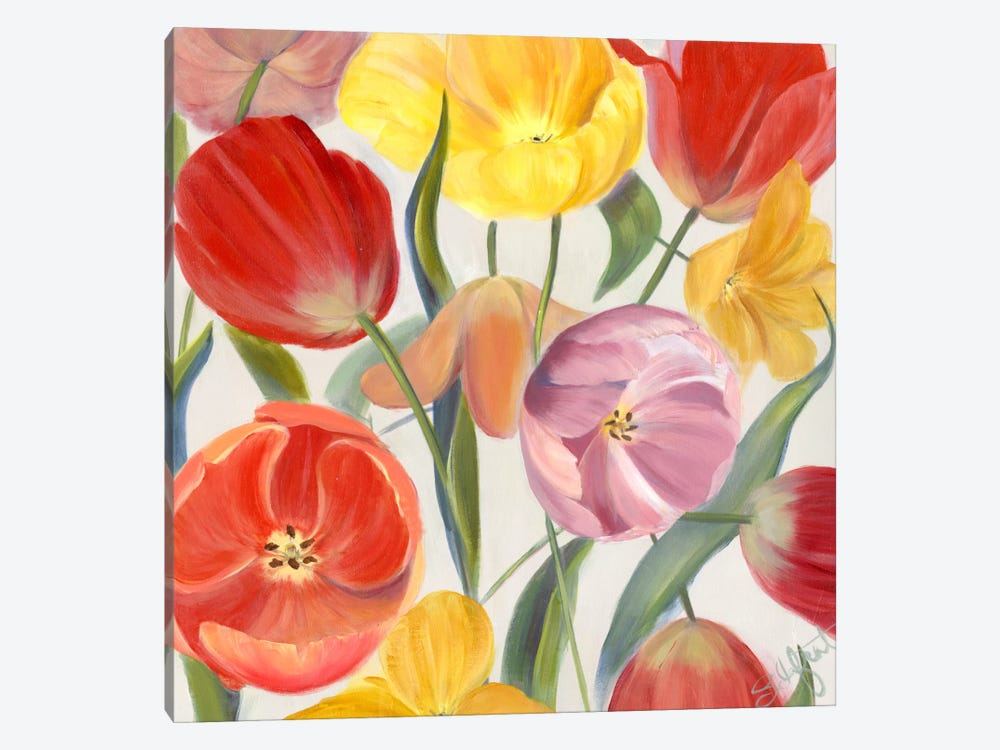 Sandy's Spring Mix I by Sandra Iafrate 1-piece Canvas Wall Art
