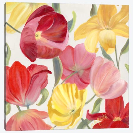 Sandy's Spring Mix II Canvas Print #IAF15} by Sandra Iafrate Canvas Art Print