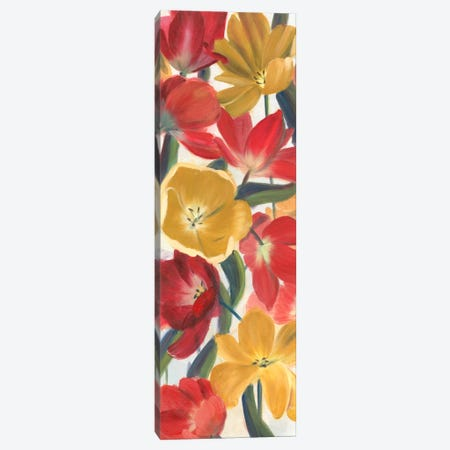 Tulip Array Panel I Canvas Print #IAF20} by Sandra Iafrate Canvas Print