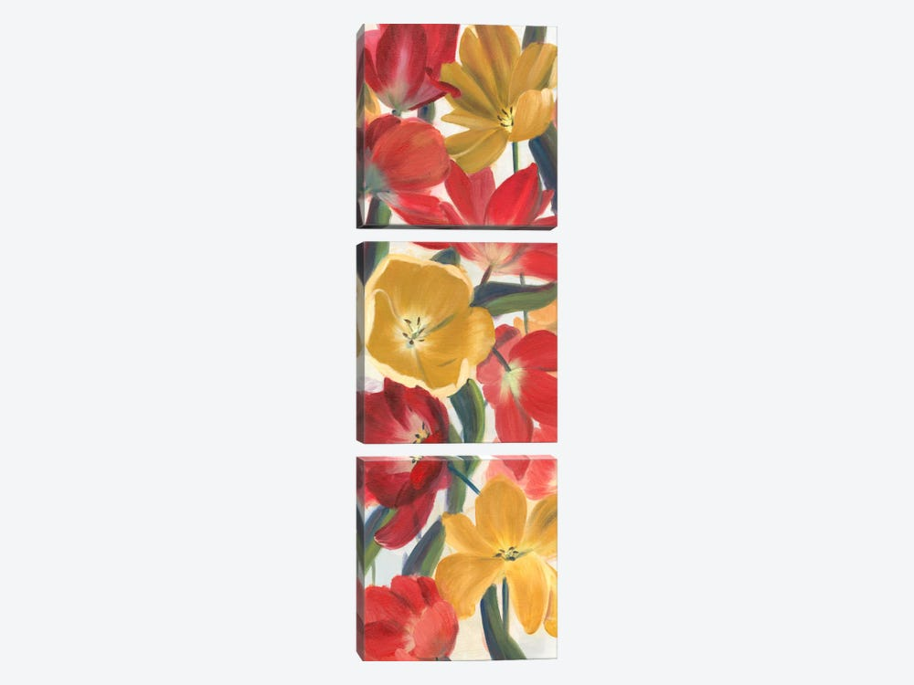 Tulip Array Panel I by Sandra Iafrate 3-piece Canvas Print