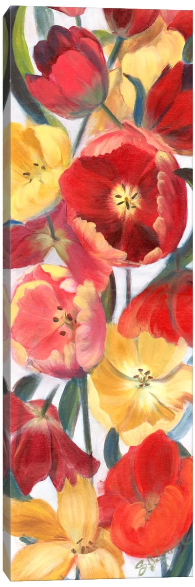Tulip Array Panel II Canvas Art Print