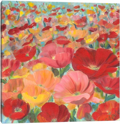Wild Flower Field I Canvas Print #IAF22