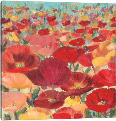 Wild Flower Field II Canvas Print #IAF23