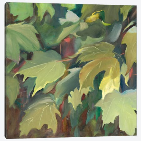 Leaf Array I Canvas Print #IAF24} by Sandra Iafrate Canvas Art