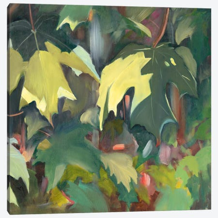 Leaf Array II Canvas Print #IAF25} by Sandra Iafrate Canvas Artwork