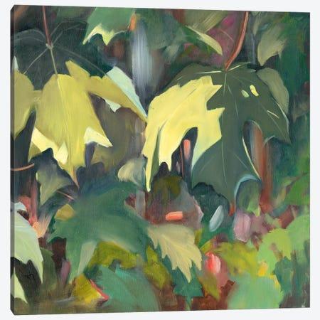 Leaf Array II Canvas Print #IAF25} by Sandra Iafrate Canvas Artwork