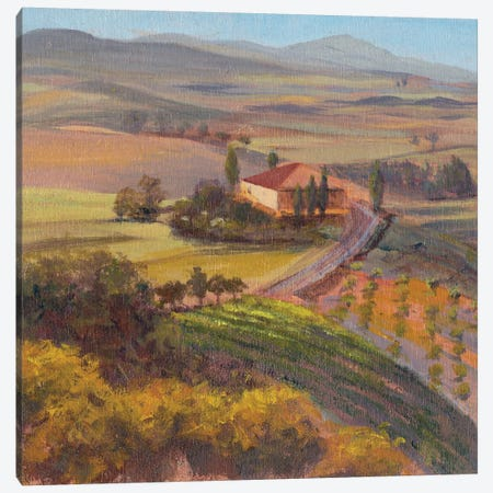 Nostalgic Tuscany I Canvas Print #IAF26} by Sandra Iafrate Canvas Artwork