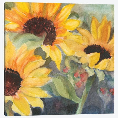 Sunflowers In Watercolor II Canvas Print #IAF30} by Sandra Iafrate Canvas Wall Art