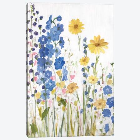 Periwinkle Wildflowers I Canvas Print #IAF35} by Sandra Iafrate Canvas Art Print