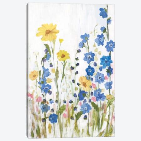 Periwinkle Wildflowers II Canvas Print #IAF36} by Sandra Iafrate Canvas Art Print
