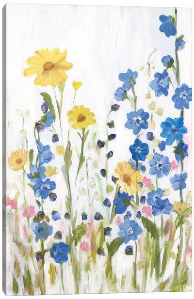 Periwinkle Wildflowers II Canvas Art Print