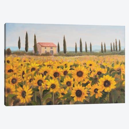 Tuscan Memories I Canvas Print #IAF37} by Sandra Iafrate Art Print
