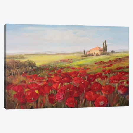 Tuscan Memories II Canvas Print #IAF38} by Sandra Iafrate Canvas Artwork