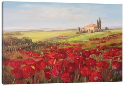 Tuscan Memories II Canvas Art Print