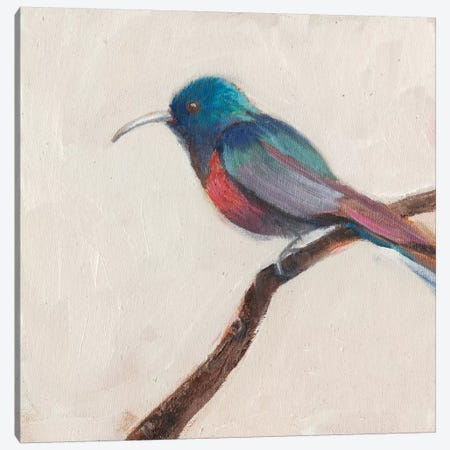 Bird Profile I Canvas Print #IAF4} by Sandra Iafrate Canvas Print
