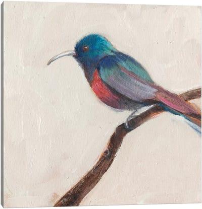 Bird Profile I Canvas Art Print