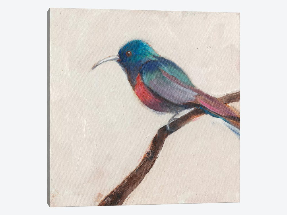 Bird Profile I by Sandra Iafrate 1-piece Canvas Print
