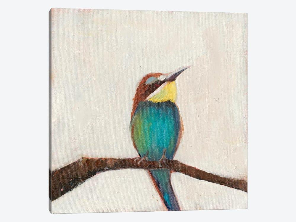 Bird Profile II by Sandra Iafrate 1-piece Canvas Art