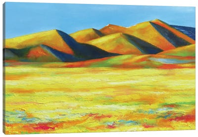 Distant Foothills Canvas Art Print