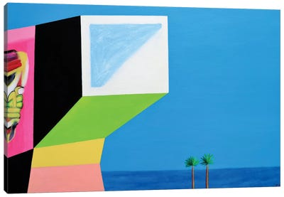House With Graffiti Canvas Art Print