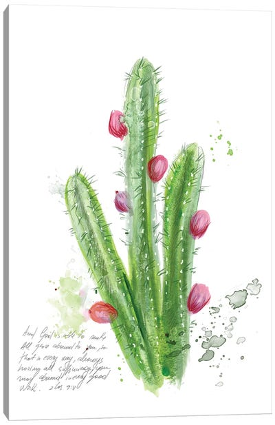 Cactus Verse II Canvas Art Print