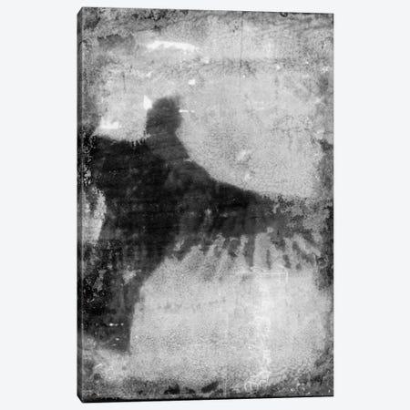 B&W Flight VIII Canvas Print #IBL8} by Ingrid Blixt Canvas Art Print