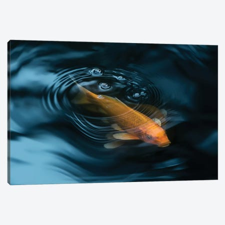 Decorative Fish Canvas Print #IBN2} by Ibrahim Nabeel Art Print