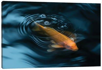 Decorative Fish Canvas Art Print