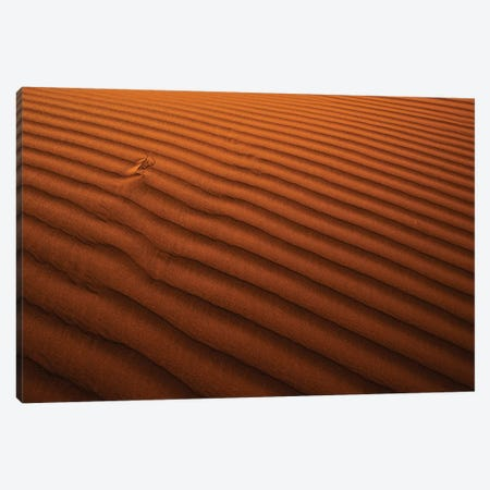 Golden Lines Canvas Print #IBN4} by Ibrahim Nabeel Canvas Artwork