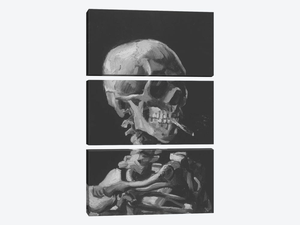 Sketch of Skull With Cigarette by 5by5collective 3-piece Canvas Art Print
