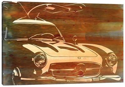Vintage Wings Brushed Orange Aluminum Canvas Art Print