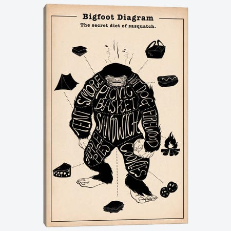 Big Foot Anatomy Diagram Canvas Print #ICA1050} by 5by5collective Canvas Artwork