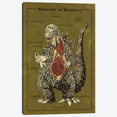 Godzilla Anatomy Diagram Canvas Print #ICA1052} by 5by5collective Canvas Artwork