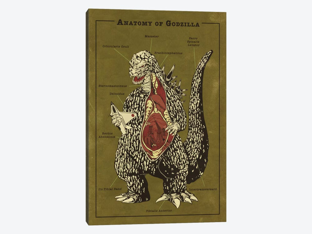 Godzilla Anatomy Diagram by 5by5collective 1-piece Canvas Art