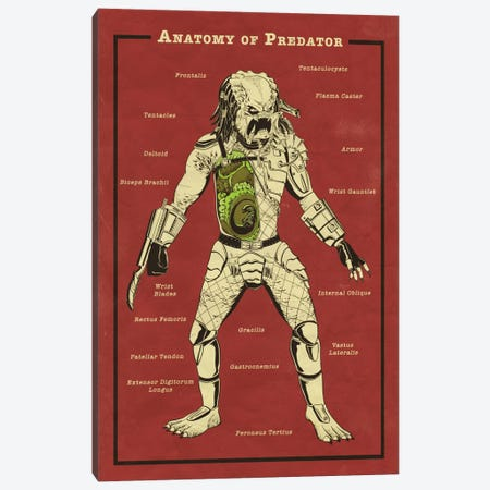 Predator Anatomy Diagram Canvas Print #ICA1054} by 5by5collective Canvas Art Print