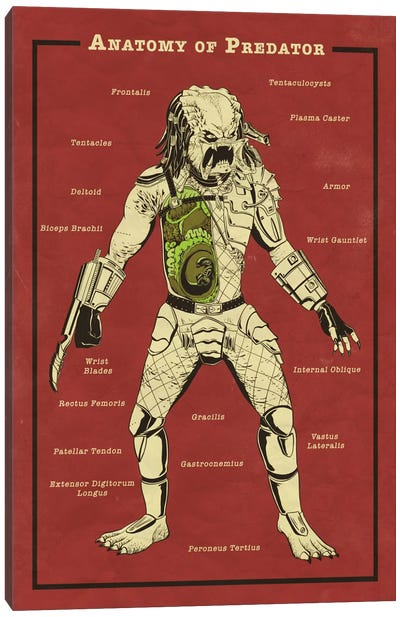 Predator Anatomy Diagram Canvas Art Print