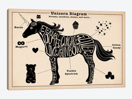 Unicorn Anatomy Diagram 2 Canvas Art Print By 5by5collective Icanvas