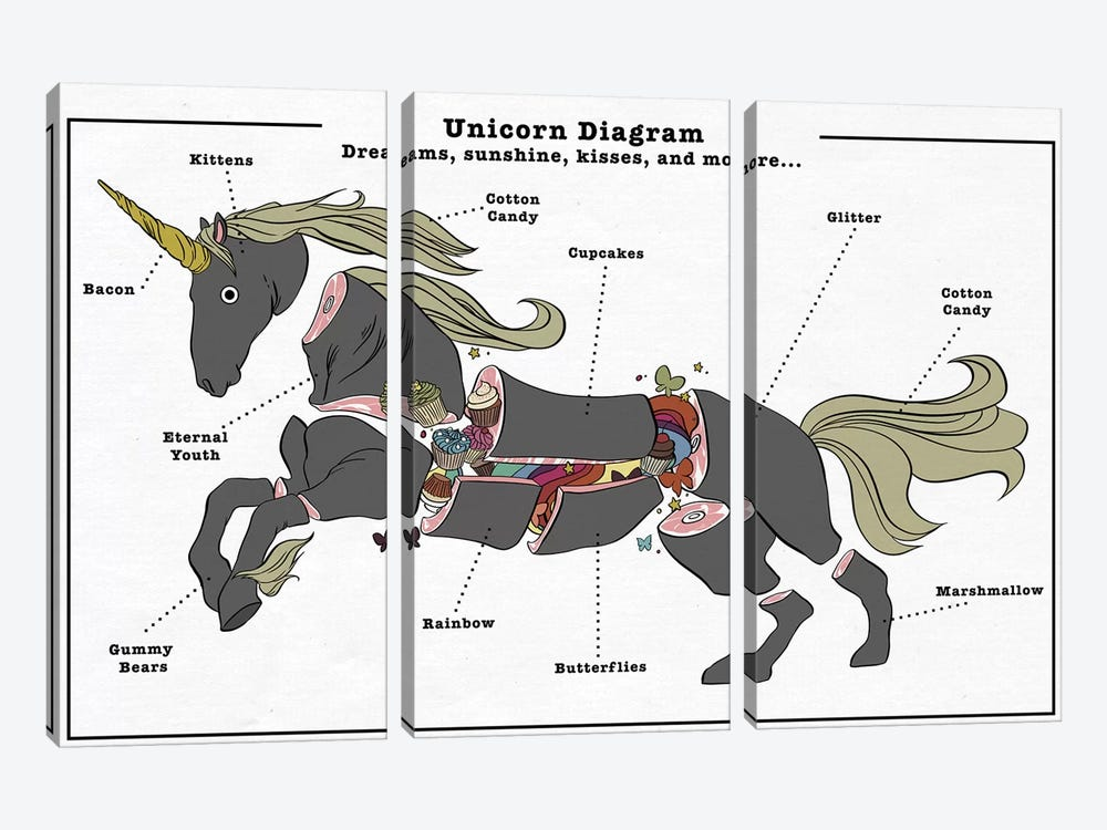 Unicorn Anatomy Diagram #3 by 5by5collective 3-piece Art Print