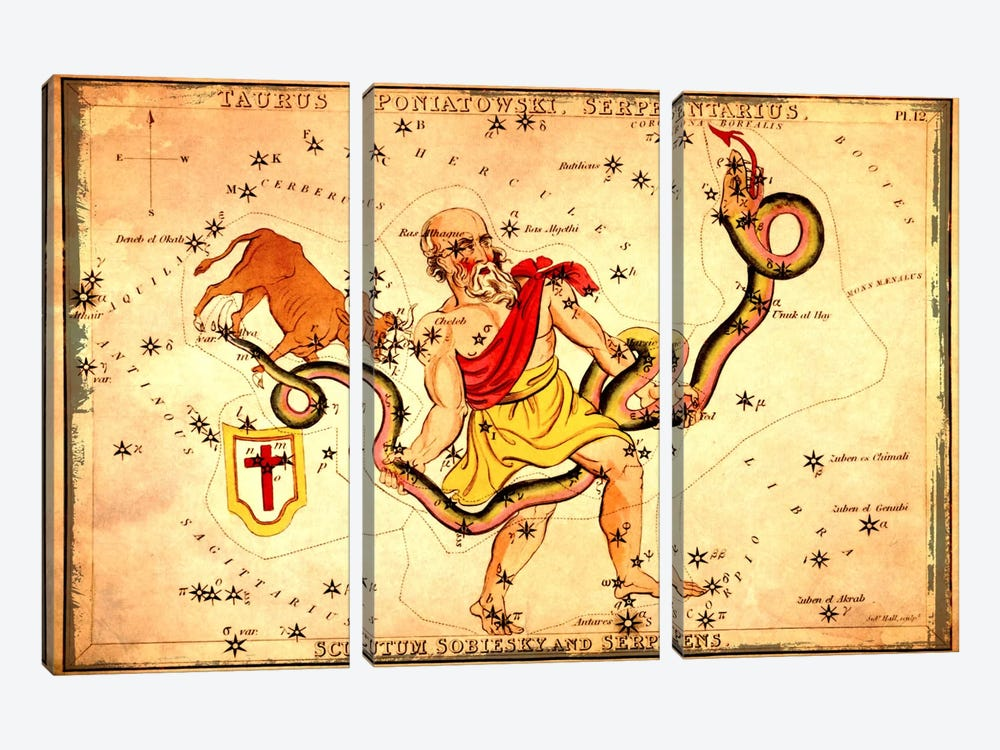 Ophiuchus1825 by Sidney Hall 3-piece Canvas Wall Art