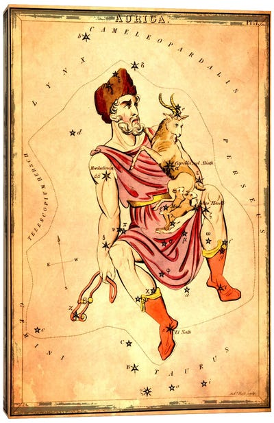 Auriga 1825 Canvas Art Print