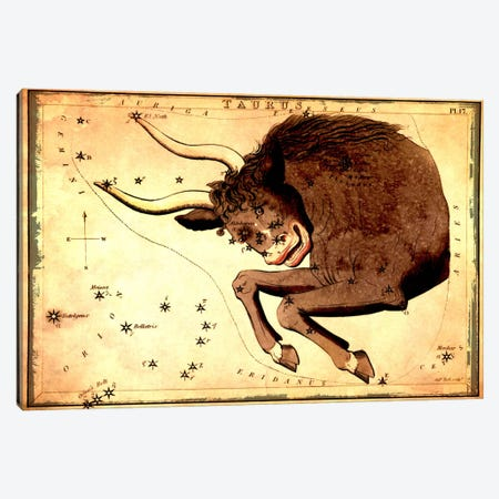 Taurus Constellation III Canvas Print #ICA1081} by Sidney Hall Canvas Print