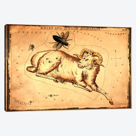 Aries & Musca Borealis1825 Canvas Print #ICA1087} by Sidney Hall Canvas Art
