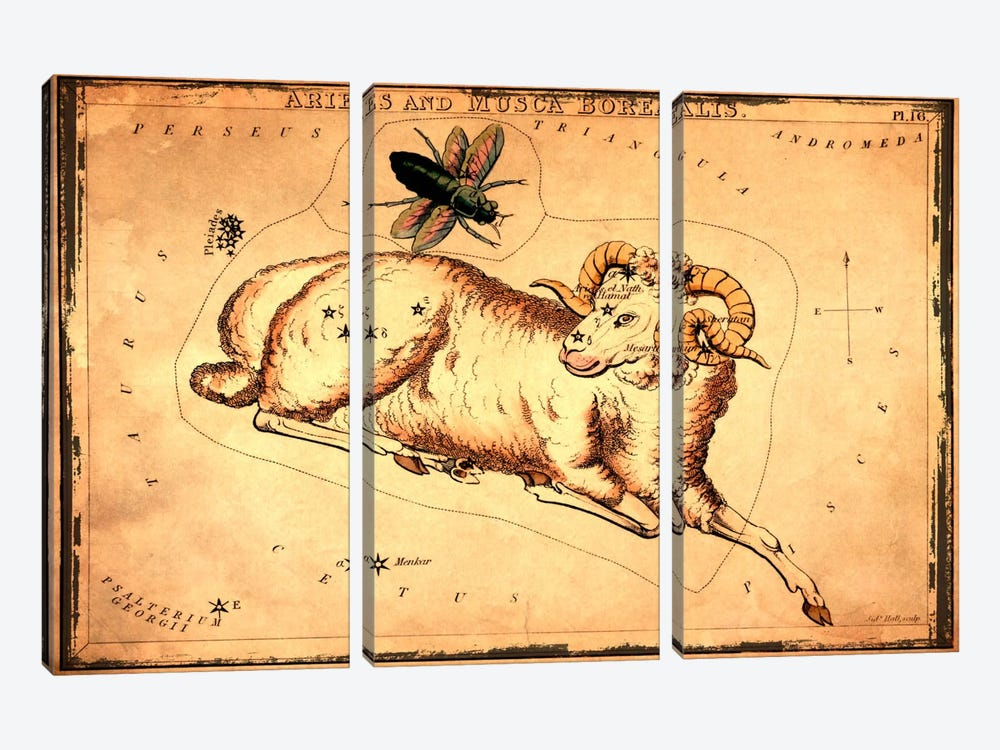 Aries & Musca Borealis1825 by Sidney Hall 3-piece Canvas Wall Art
